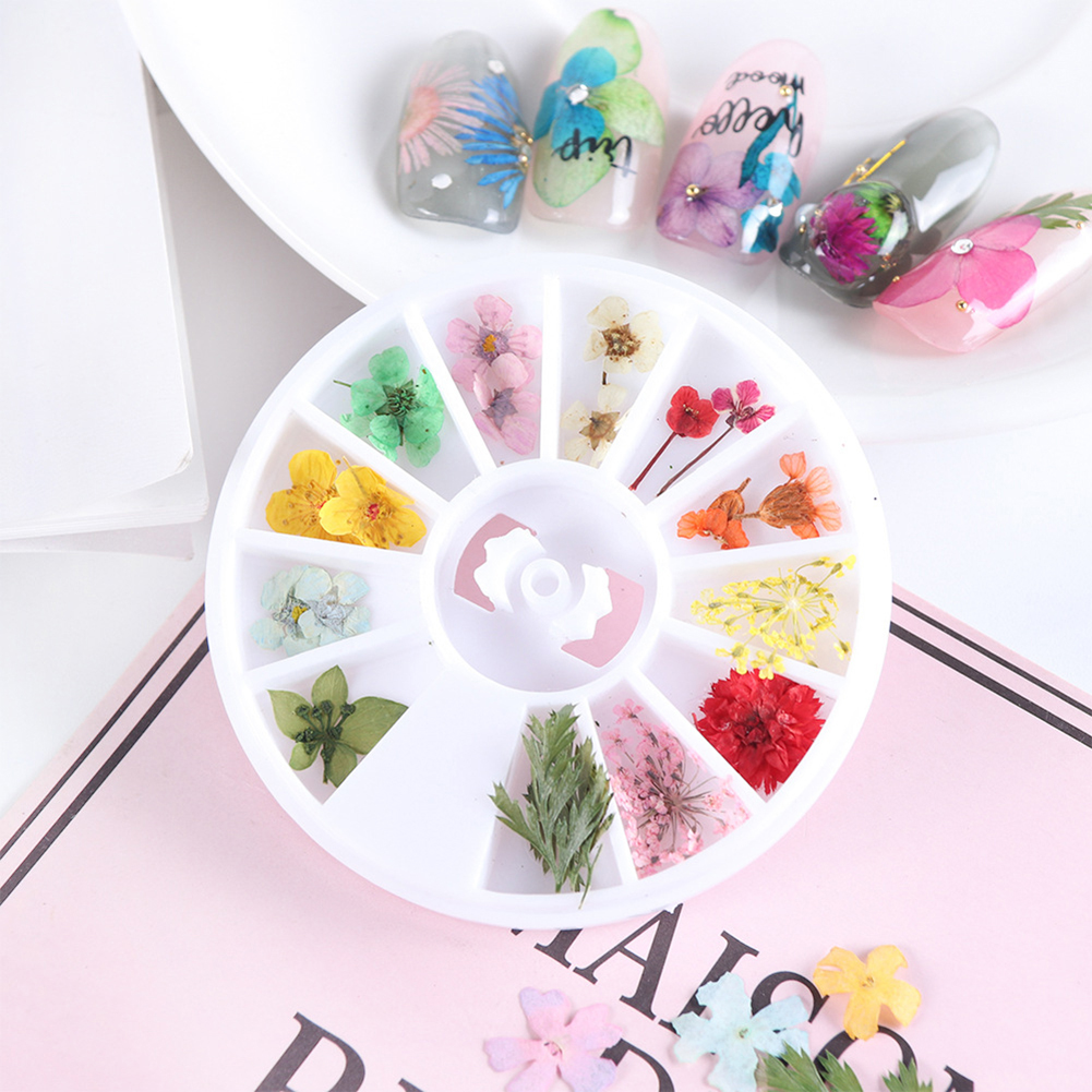 36Pcs 3D Nail Art DIY Tip Sticker Dried Flower Acrylic Decoration Wheel Box USA Health & Beauty